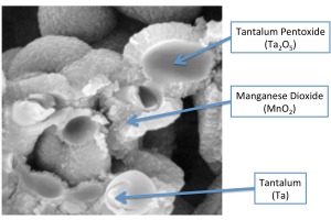 MnO2-Tantalum Cross-sectioned SEM