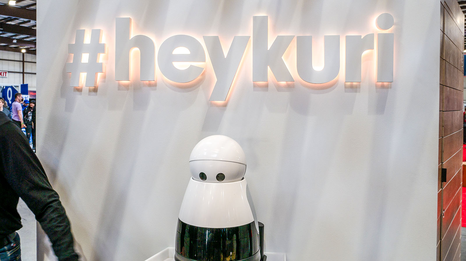 Hey Kuri Personal Robot
